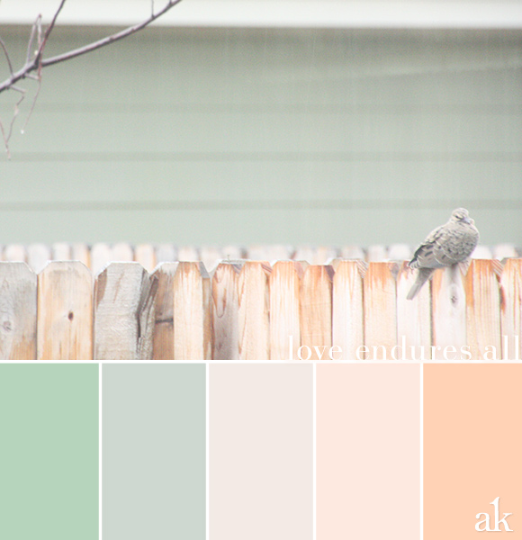 From bad wine to divine the style flood - Peach color paint palette ...